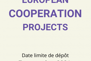 EC-Cooperation-2021